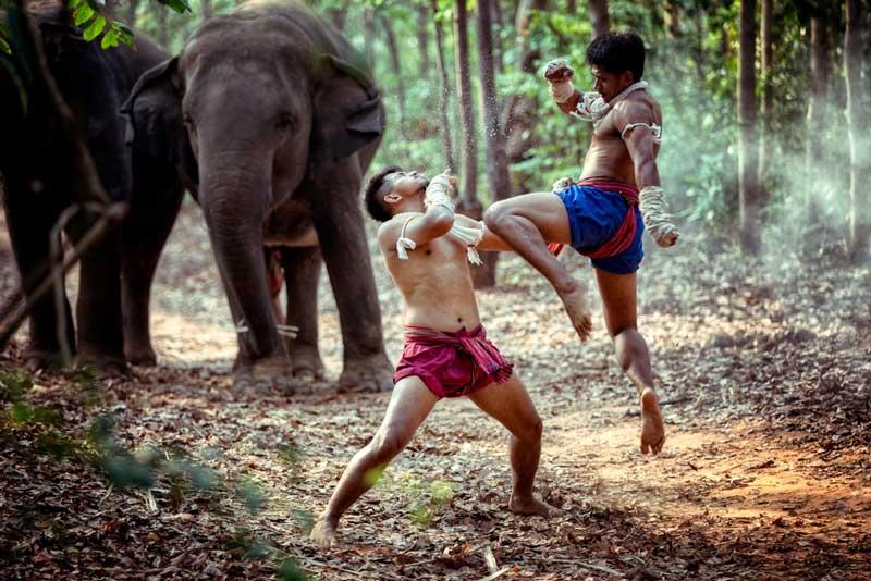 Chiang Mai Muay Thai