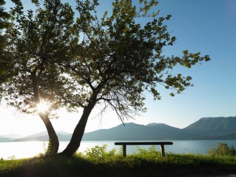Piemonte, tra Colli Innevati e Percorsi Gastronomici